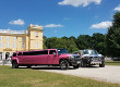 Pink Limo - Roze Limousine